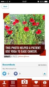 Donate a photo image